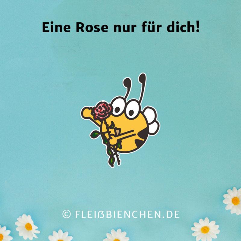 Eine Rose nur für dich!